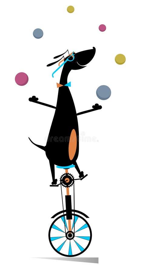 滑稽的狗在单轮脚踏车乘坐并且玩杂耍球例证 库存例证
