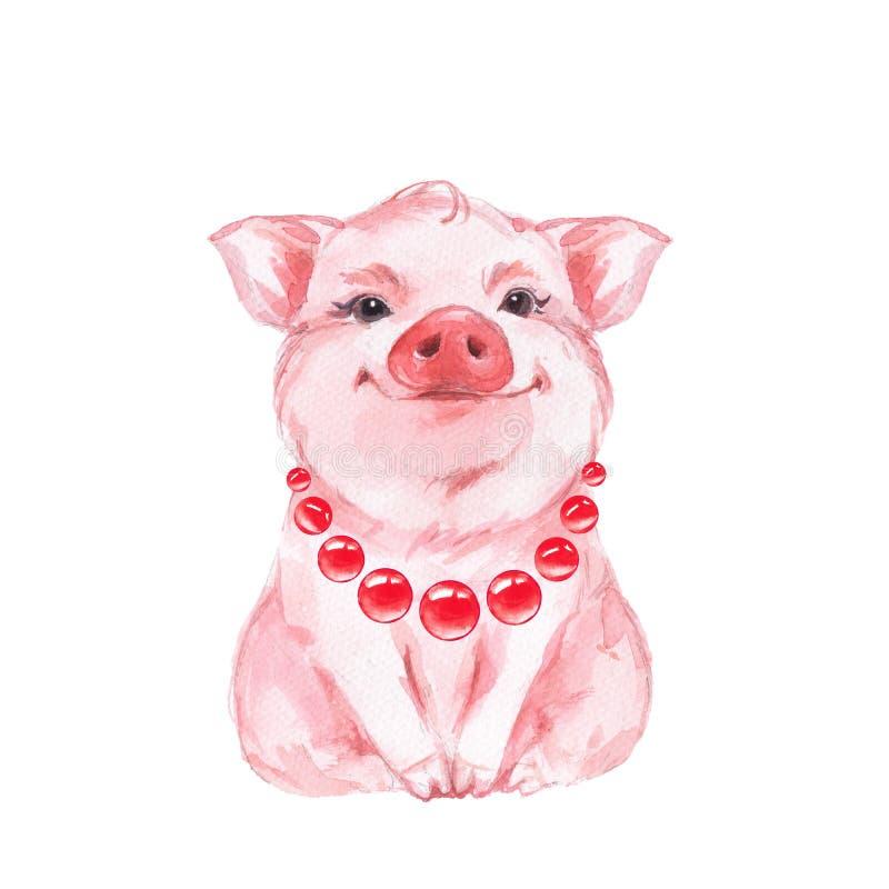滑稽的猪 查出在白色 库存例证