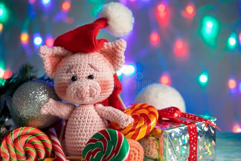 滑稽的贺卡与新年2019年 与棒棒糖特写镜头的桃红色猪在与照明的背景 免版税库存图片