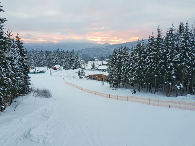 滑雪和雪撬倾斜在冬天森林里 免版税库存照片