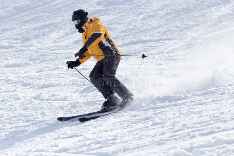 滑雪在冬天的人们 免版税库存图片