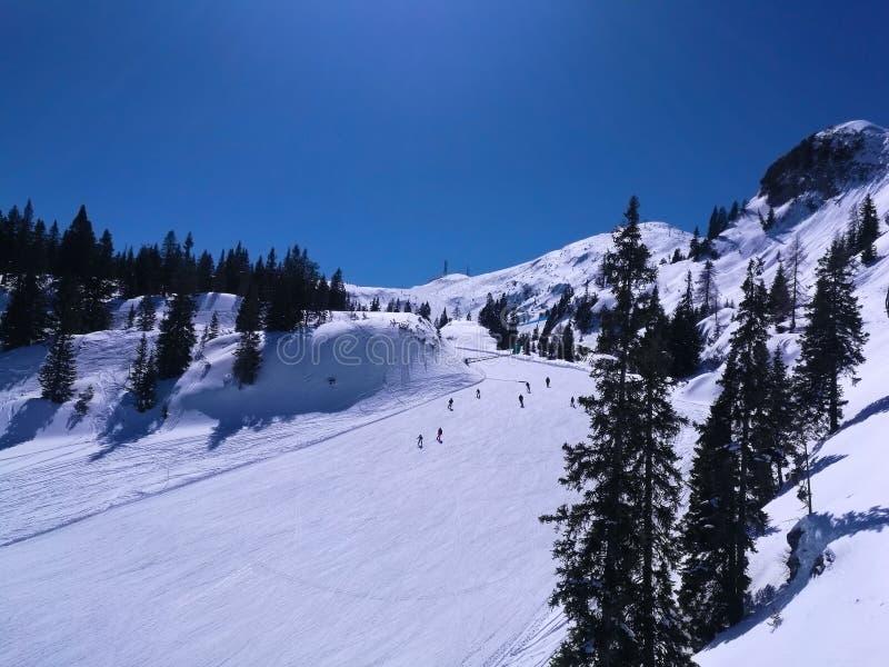 滑雪在白色雪倾斜滑雪坡道的人们 库存照片