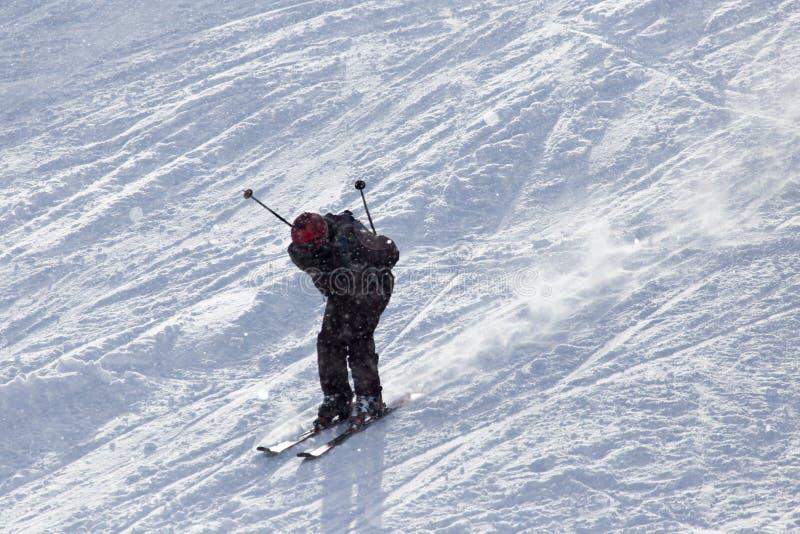 滑雪在雪的人们 免版税图库摄影