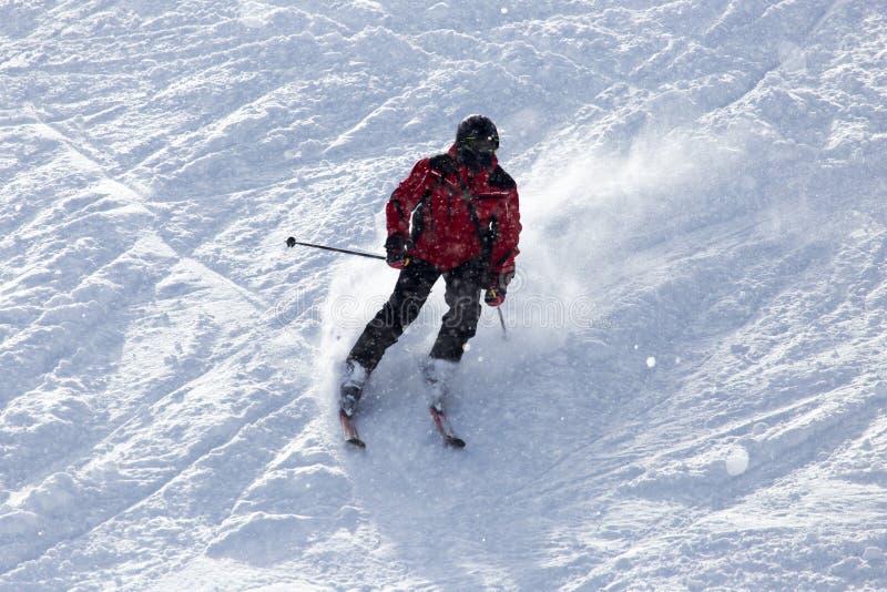 滑雪在雪的人们 免版税库存照片