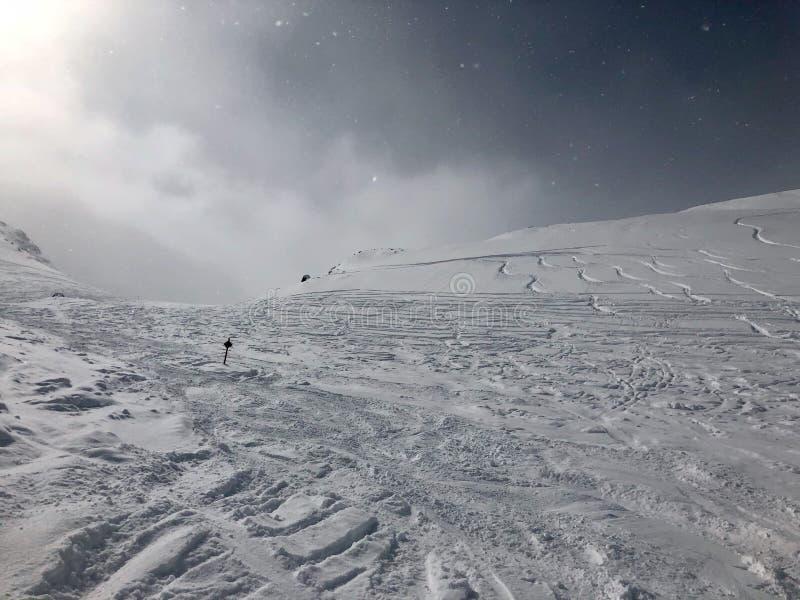 滑雪在Stubai冰川滑雪胜地 库存照片