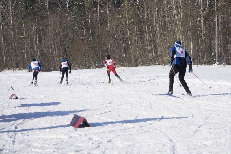 滑雪寒假雪滑雪者太阳和乐趣 免版税库存照片