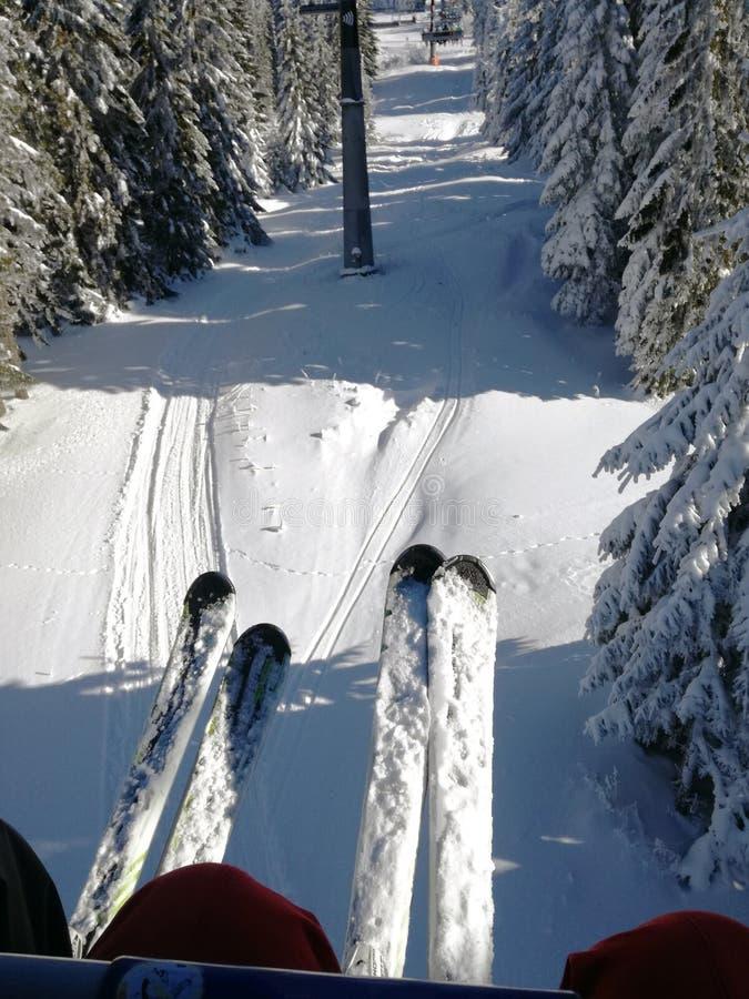滑雪胜地Kopaonik,塞尔维亚 免版税库存照片