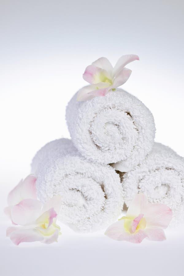滚的温泉毛巾上升白色 免版税库存照片