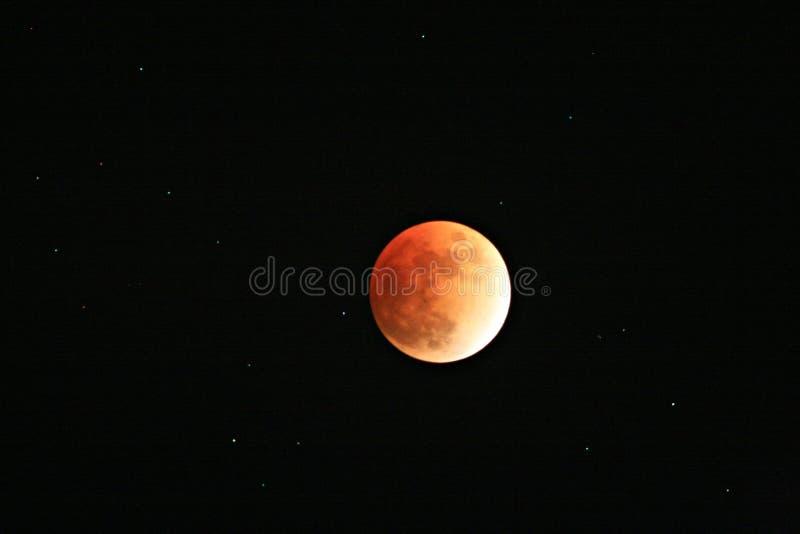满天星斗elcipsed月亮的天空完全地 免版税库存照片