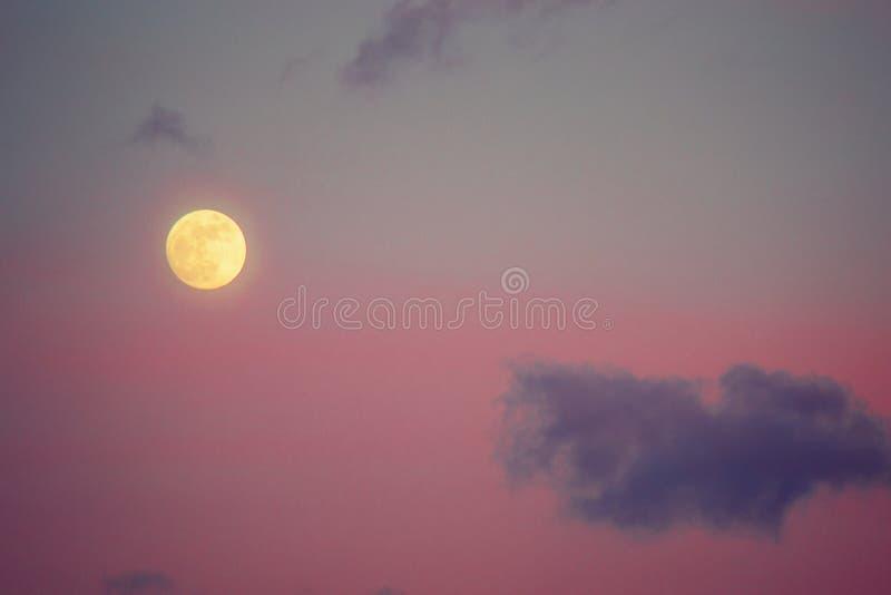 满月和桃红色天空 库存照片