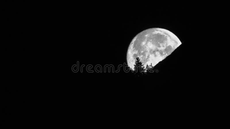 满月在山和树剪影后消失 免版税图库摄影