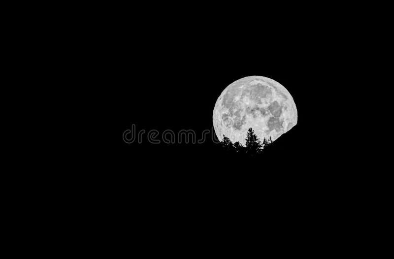 满月在山和树剪影后消失 库存照片