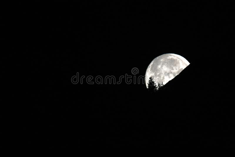 满月在山和树剪影后消失 库存图片