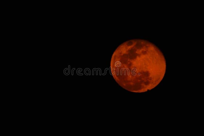满月桃红色月亮看法在2019年4月,在颜色变粉红色 库存图片