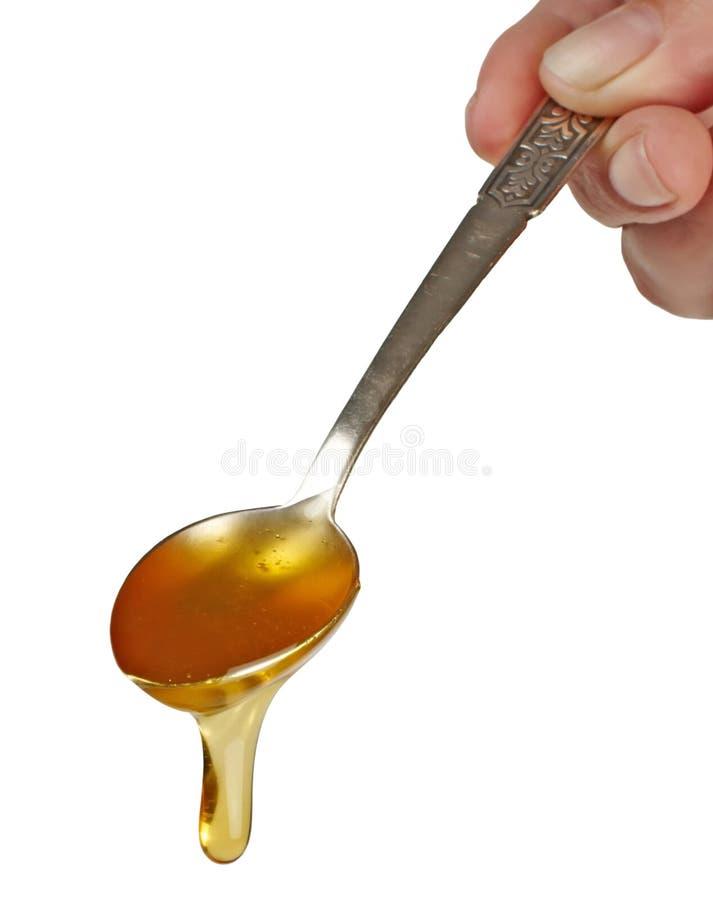滴水蜂蜜匙子 库存照片