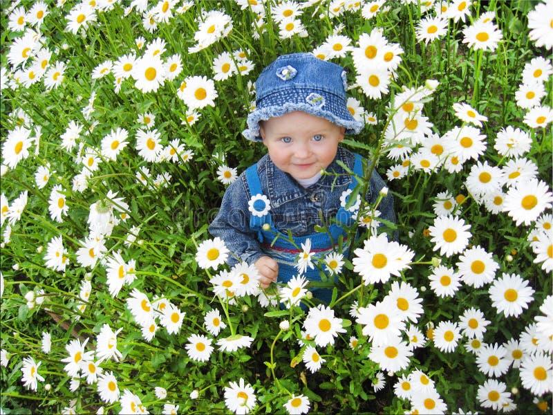 漂亮的孩子在camomiles花圃里  库存图片