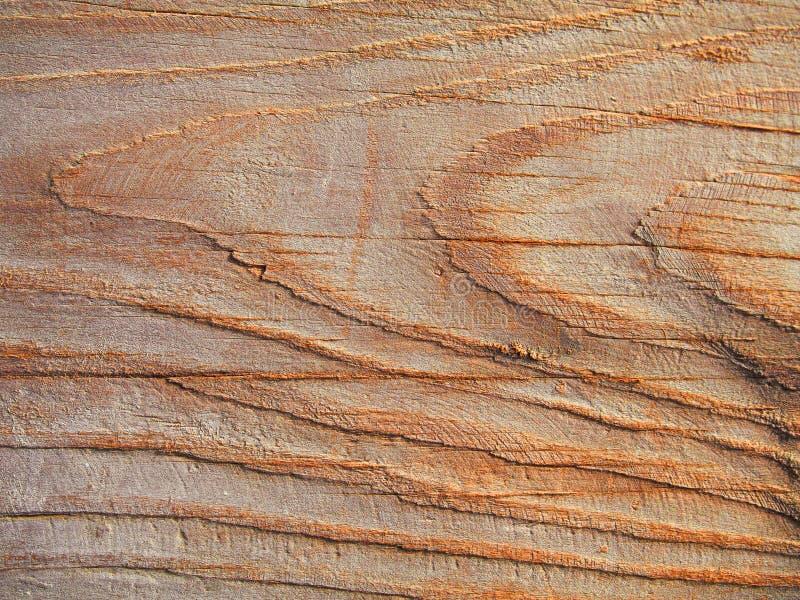 漂流木头纹理,五谷概略的漂泊木背景 免版税库存图片