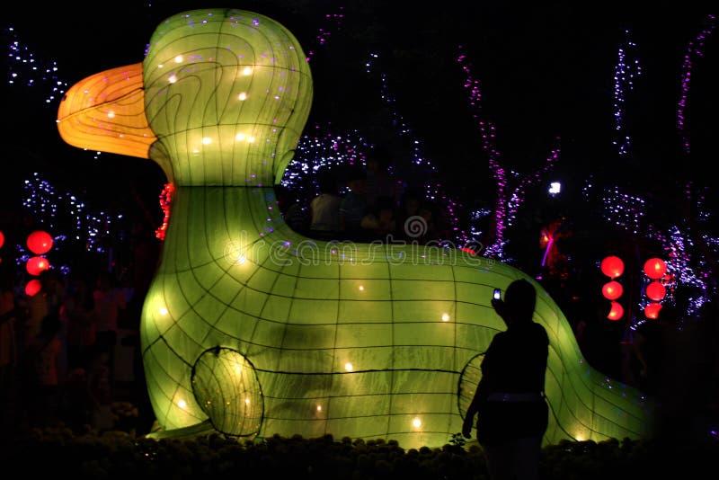 漂浮在水佛光山马来西亚的大纸绿色鸭子灯笼 库存图片