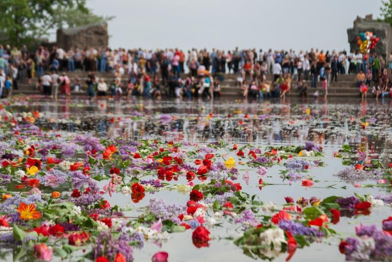 漂浮在泪花湖的花在Mamaev小山的在伏尔加格勒 库存图片