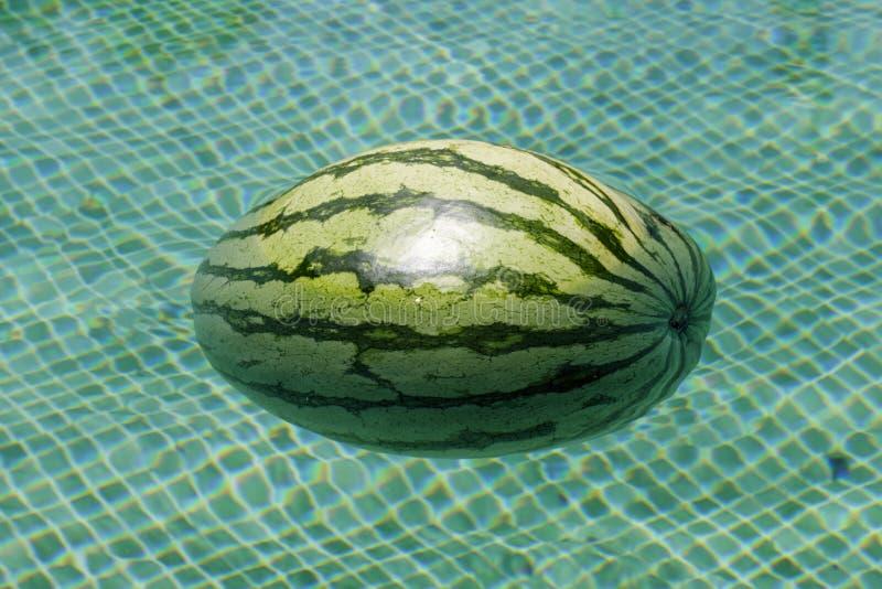 漂浮在游泳池的西瓜特写镜头 库存照片