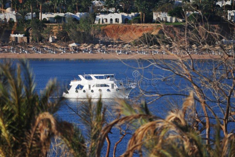 漂浮在蓝色海的白色游艇的看法在离埃及的海岸的附近通过绿色叶子 免版税库存照片
