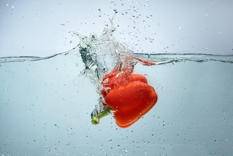 漂浮在水射击的甜红辣椒 免版税库存图片