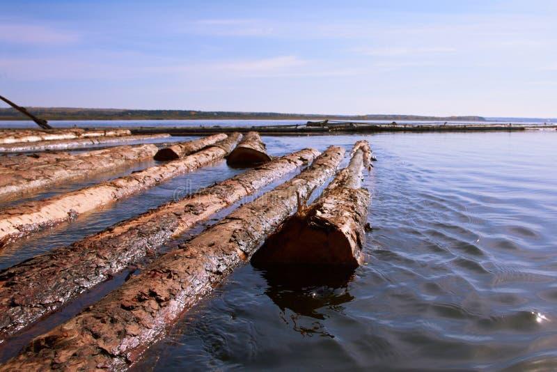 漂浮在水的日志 免版税库存照片