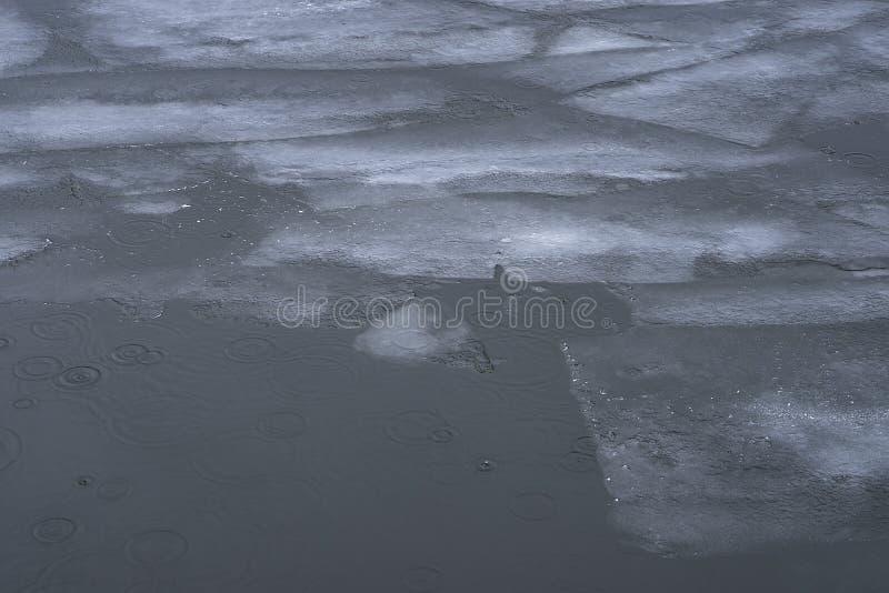 漂移的浮冰在水漂浮 打破在ri的冰 库存照片