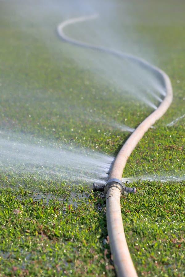 漏从在水管的孔的水 免版税库存图片
