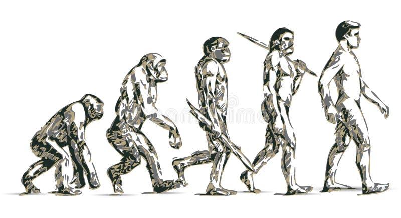 演变人 向量例证
