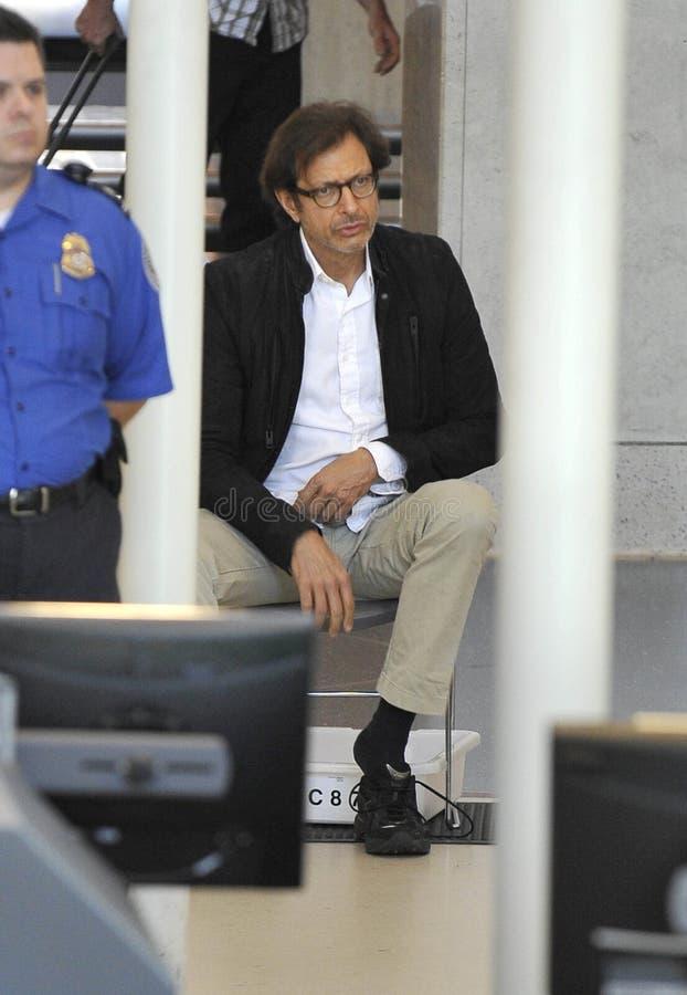 演员goldblum被看见的杰夫松驰 图库摄影