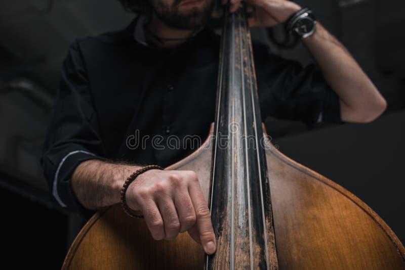 演奏低音提琴的人播种的射击 免版税图库摄影
