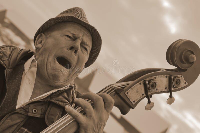 演奏低音提琴的人 免版税库存图片