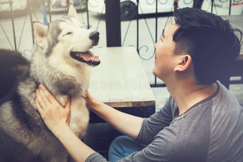 演奏和接触与爱和关心的年轻亚洲男性狗所有者愉快的多壳的西伯利亚狗宠物 库存照片