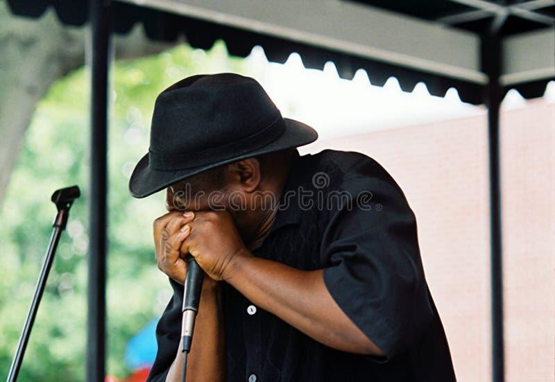 演奏在Beale街上的蓝色艺术家一只口琴在孟菲斯, TN 库存图片