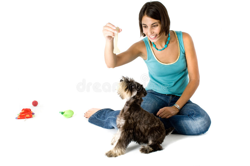 演奏小狗的责任人 免版税库存照片