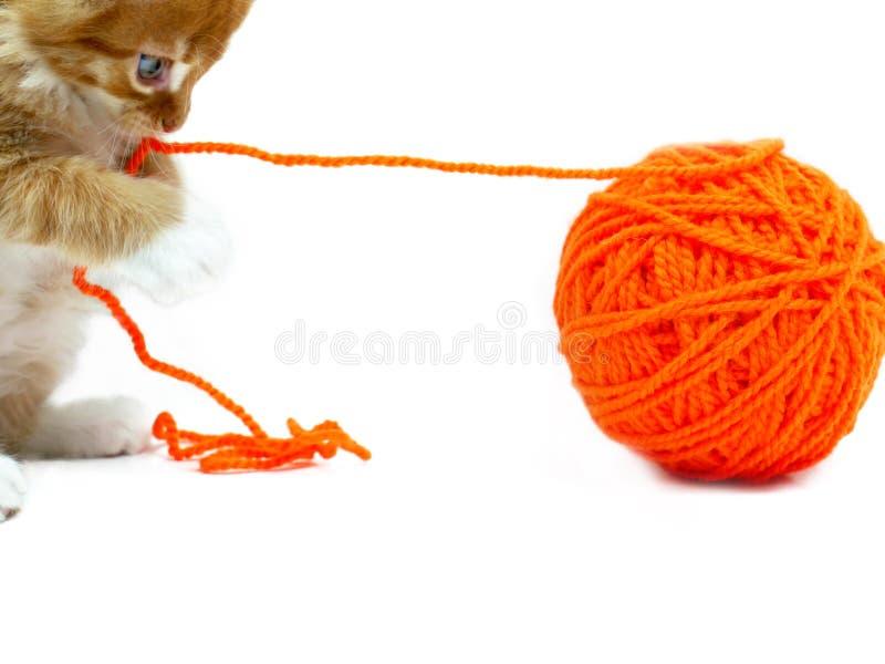 演奏羊毛的球小猫 免版税库存照片