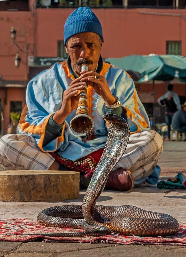 演奏音乐,马拉喀什,摩洛哥的耍蛇者 免版税库存照片