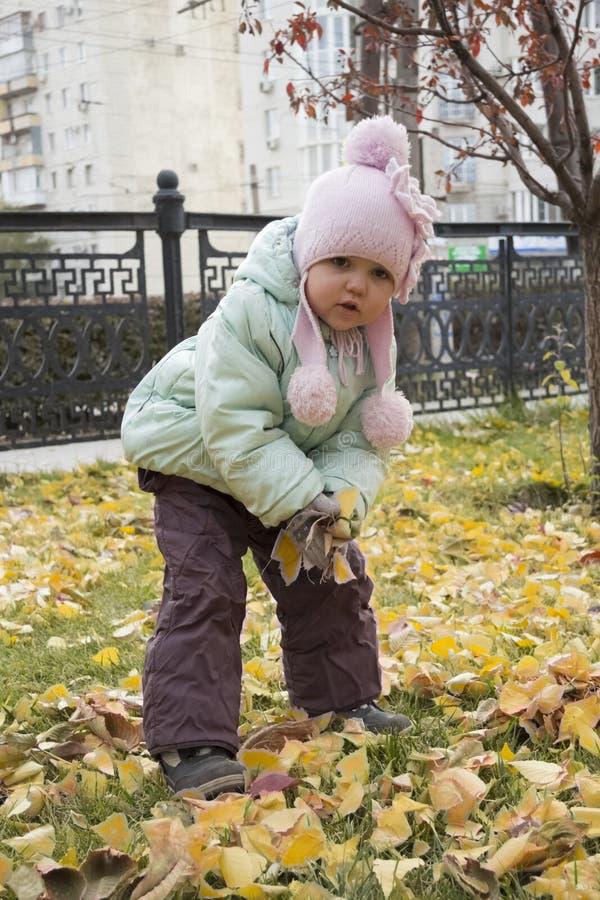 演奏黄色叶子的女孩在公园 免版税库存照片