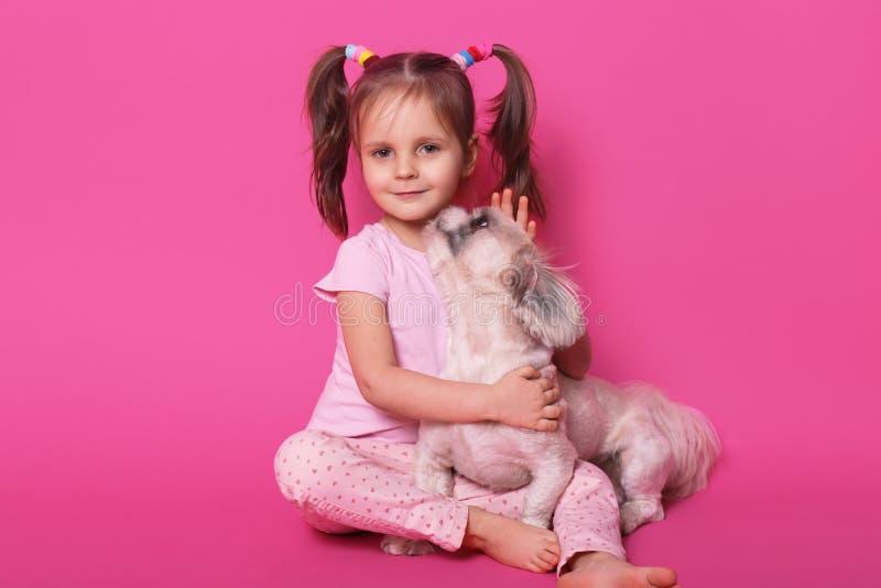 演播室被射击一点滑稽的孩子坐地板,看直接地照相机,拥抱她的宠物,享受与孩子的狗时间,甜 免版税库存照片