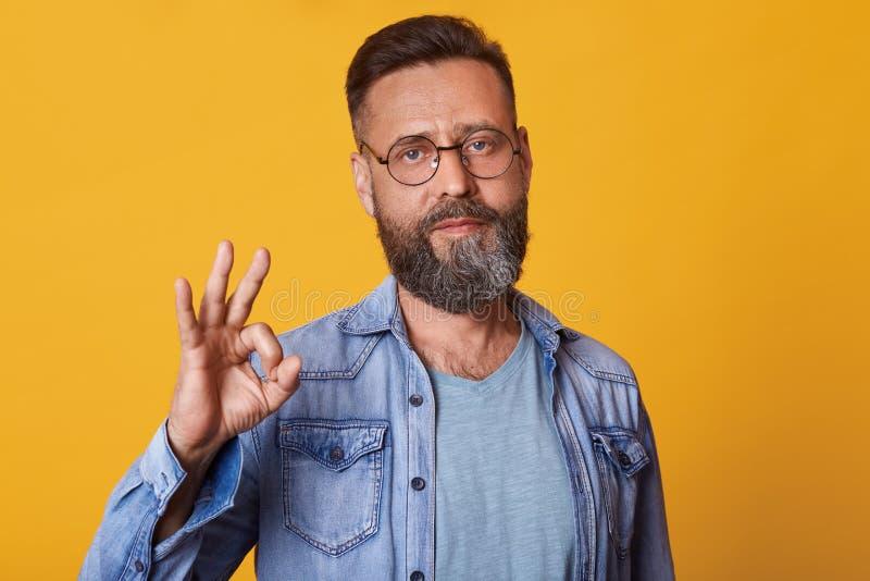 演播室被射击有胡子佩带的牛仔布夹克的,灰色T恤杉和眼镜帅哥,有正面表情,做好 免版税库存照片