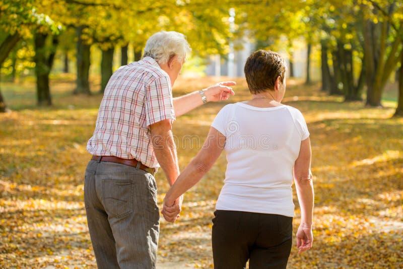 漫步在公园的年长婚姻 免版税库存图片