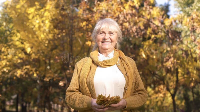 漫步在秋天公园和使用与叶子的愉快的美丽的资深妇女 免版税库存照片