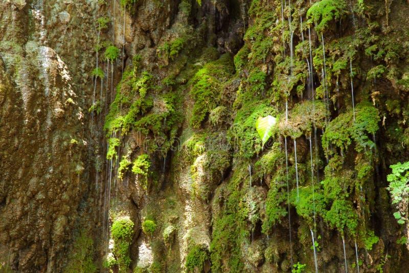 漫过峭壁的瀑布。 库存照片