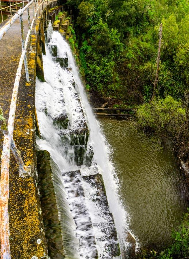 漫过水坝的水在位于碧玉里奇生物蜜饯的Searsville湖,旧金山湾区,加利福尼亚 免版税库存照片