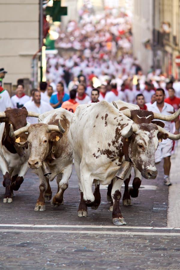 潘普洛纳, SPAIN-JULY 9 :跑在街道的公牛在圣费密期间 免版税库存图片