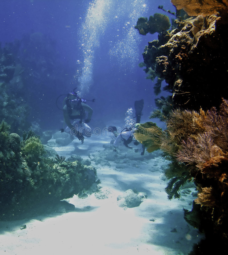 潜水员二 库存图片