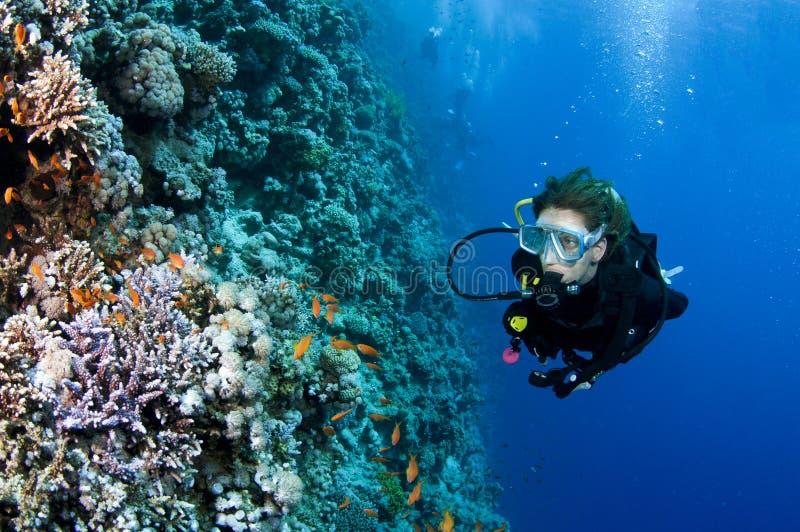 潜水员女性水肺 图库摄影