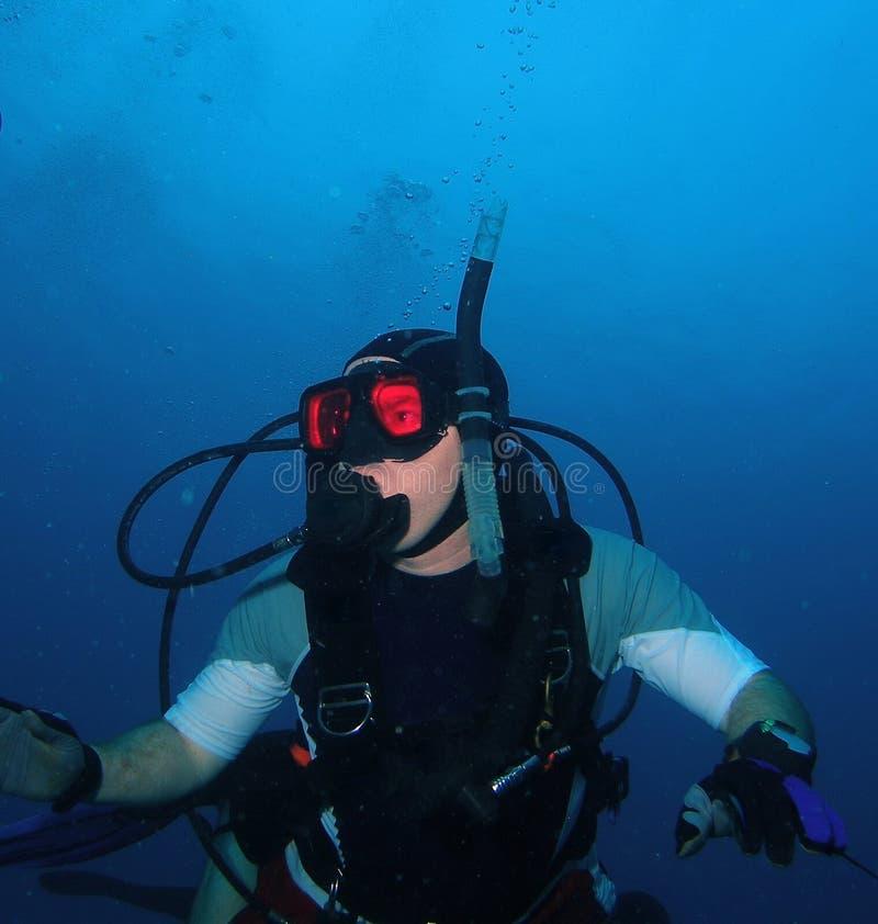 潜水员开阔水域 免版税库存照片