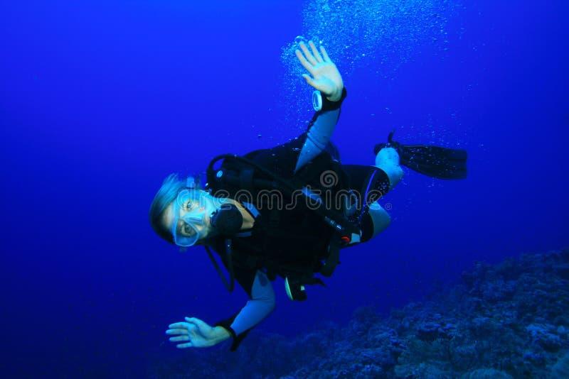 潜水员水肺妇女年轻人 库存图片